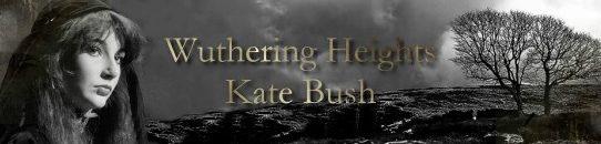 嵐ヶ丘 ケイト・ブッシュ:Kate Bush - Wuthering Heights