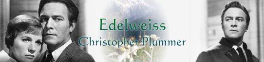 エーデルワイス:Edelweiss [歌詞和訳と意味] ~「サウンド・オブ・ミュージックより」